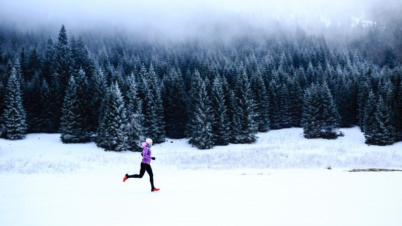 winter-runner-forest_h